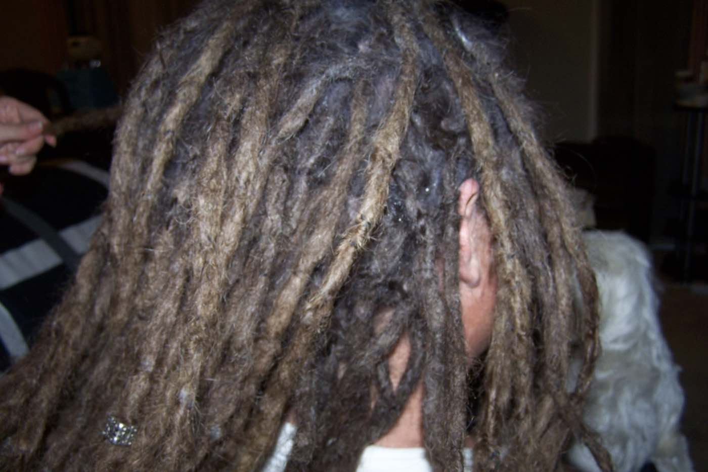 dreadlock hair